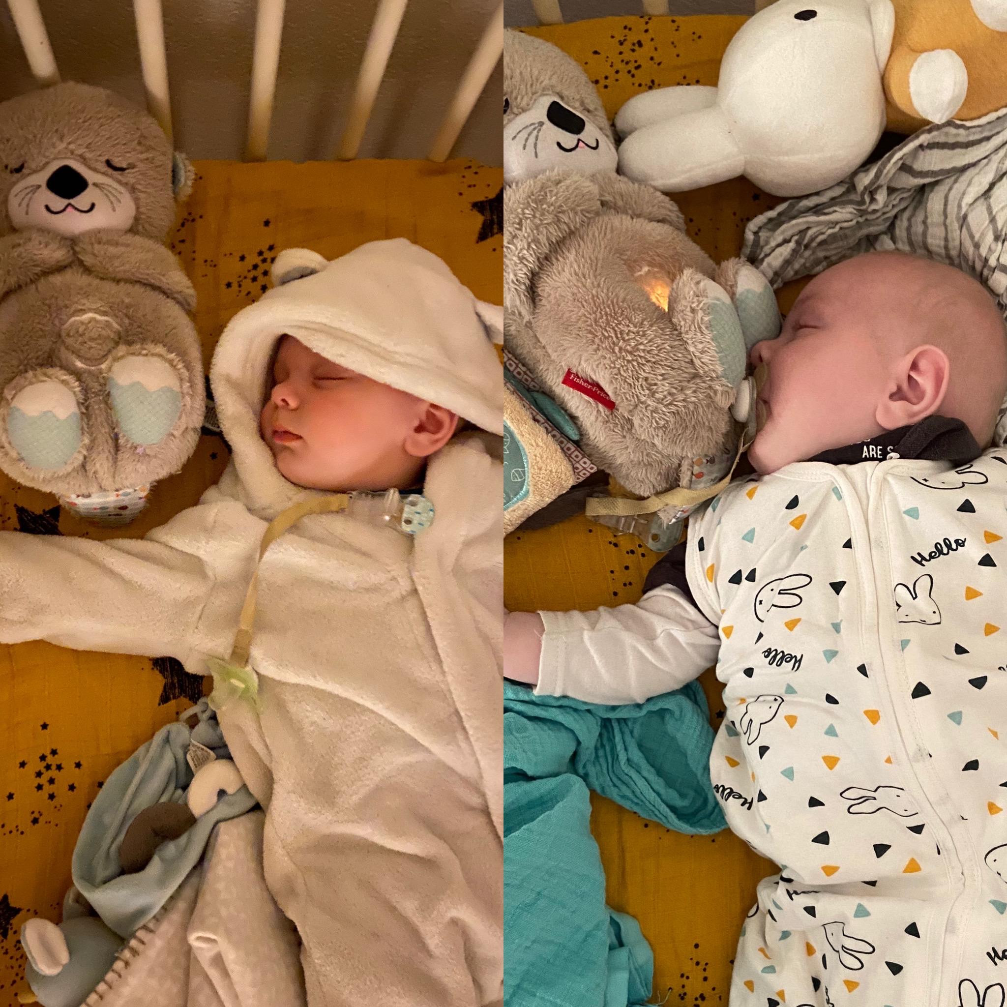 Van berenpakje naar slaapzakje